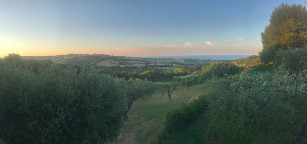 Italy Retreat location - View of the olive grove and sea